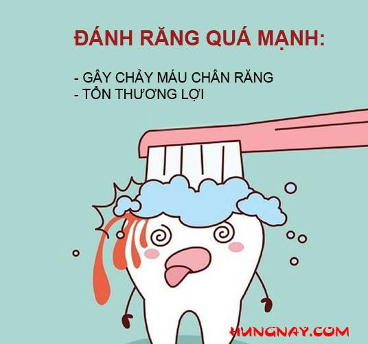 đánh răng quá mạnh gây chảy máu chân răng