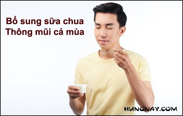 sua-chua-giam-trieu-chung-viem-mui-di-ung